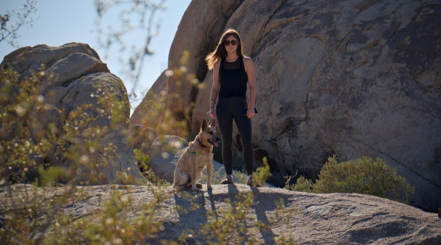 Which Is The Best Dog For Hiking Protection